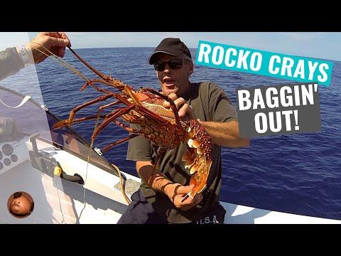 Jumbo crayfish hd western australia youtube for Fishing with crawfish