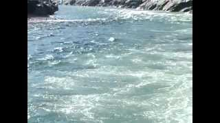 Gomukh Se Ganga Sagar (Documentary Film)