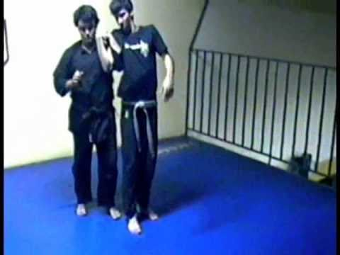 Tenshikan Ninjutsu & Aikijujutsu   Techniques submission 1 Image 1