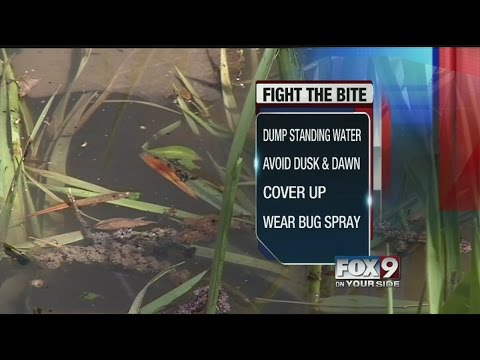Mosquitoes in Emmett test positive for West Nile virus