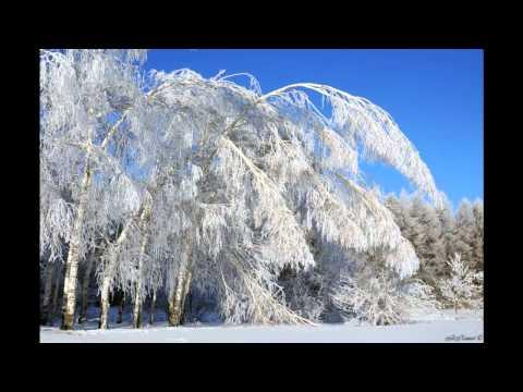 Природа и пейзажи ульяновской области