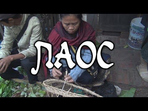 ዦ 66 ዣ Что едят лаосцы. Ужасы лаосского рынка