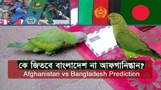 Exclusive: আজ কে জিতবে বাংলাদেশ না আফগানিস্তান? Afghanistan VS Bangladesh Prediction