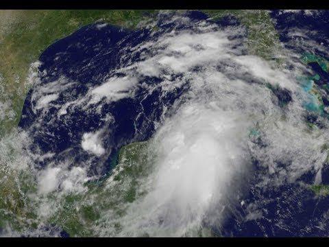 Tropical Storm Debby forms in Gulf; path still uncertain - Worldnews.