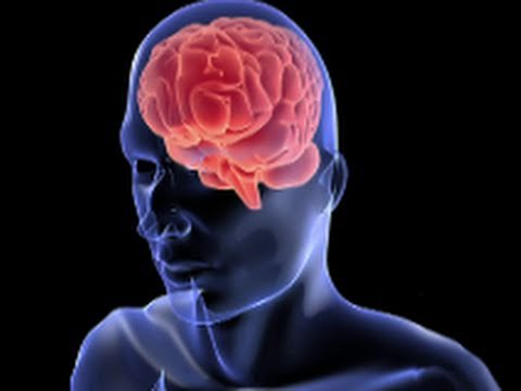 What Are Antioxidants? (Mental Health Guru)