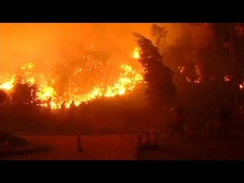 الشيلي: الحرائق تأتي على أكثر من 1600هكتار من الغابات