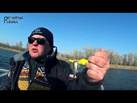 рыбалка в астрахани апрель хищник