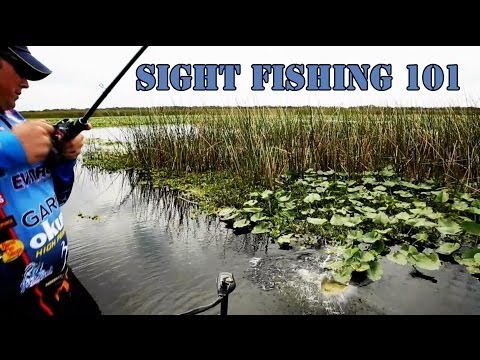 Sight Fishing 101: Bass Fishing Secrets Revealed With Scott Martin video