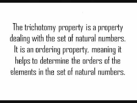 Law Of Trichotomy Property