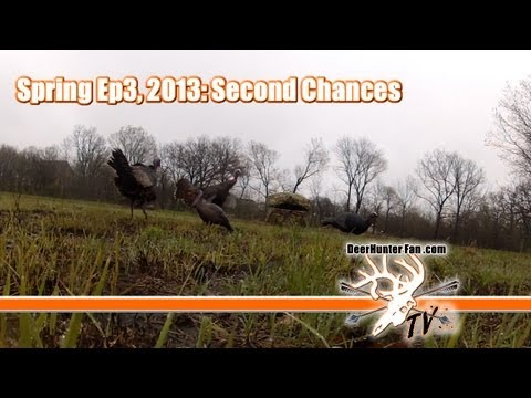 Kansas Turkey Hunting Bow Kill