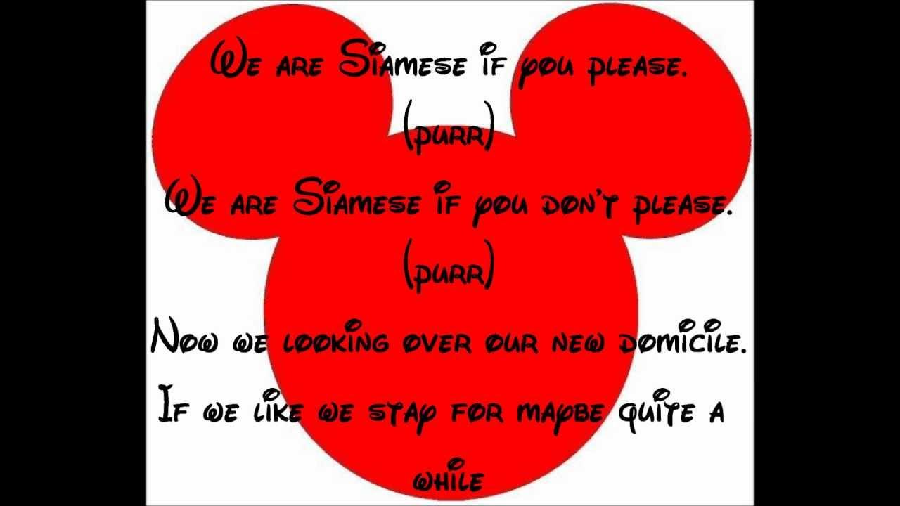 the siamese cat song lyrics youtube