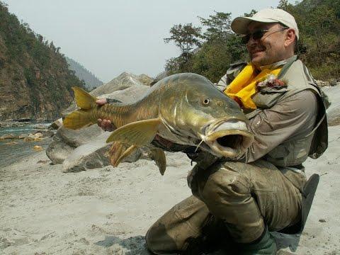 платная рыбалка в алтайском крае на карпа
