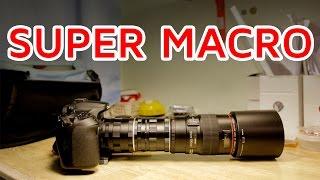 Super Macro! Macro lens + TWO extension tubes!