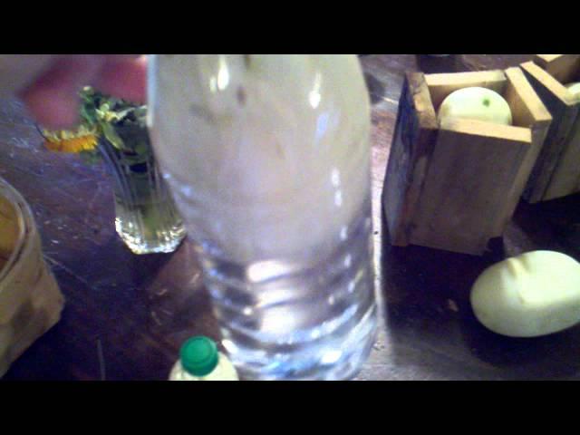Cucumber in a bottle. Grown in the bottle..