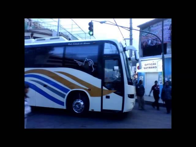 autobuses gruperos