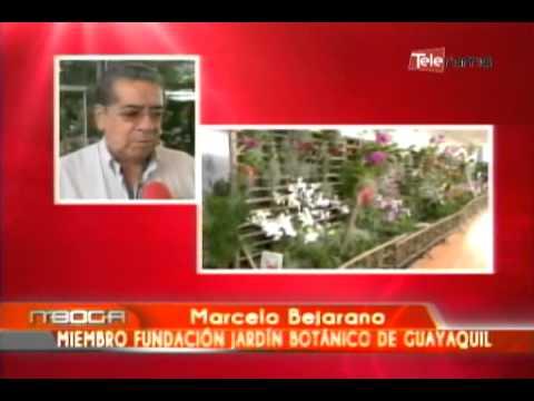 Exposición Tropi Flora Palacio de Cristal del Guayaquil