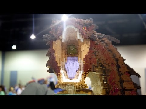 Lego Fest 2014 Richmond Virginia