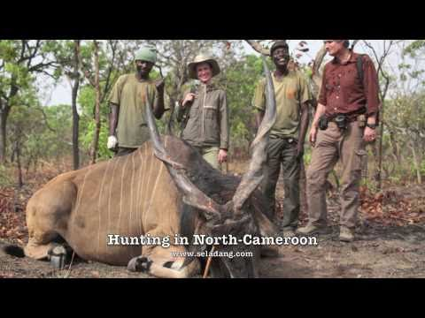 lord-derby-eland-cameroon-hunting-chasse-in-faro-river-by-seladang.html
