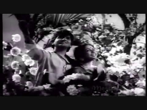 jhoole mein pawan ke aayi bahar..Rafi-Lata-Shakeel Badayuni-Naushad-Baiju Baawra1952..a tribute