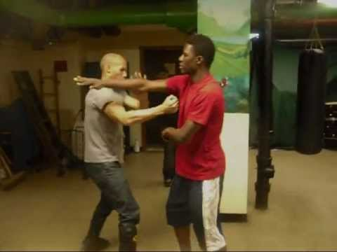 Jeet Kune Do Fighting Techniques Image 1