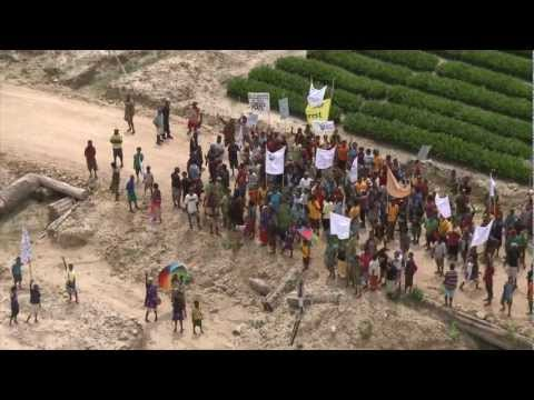 Land grabs in Papua New Guinea