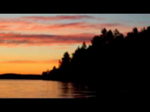 Timi Lexikon - Jälkitauti video