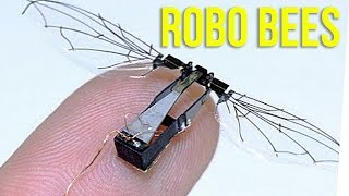 WS - Robot Bees Could Save the Earth?! ft. Steve Greene