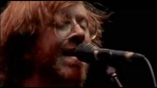 Phish - Waste