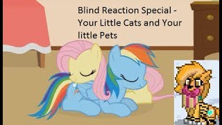 Blind Reaction Special - Your Little Cats and Your little Pets. OMG CUTE!! =D