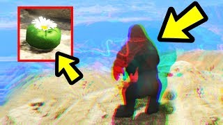 GTA 5 - This Easter Egg is HUGE!! (Peyote Plant Secret)