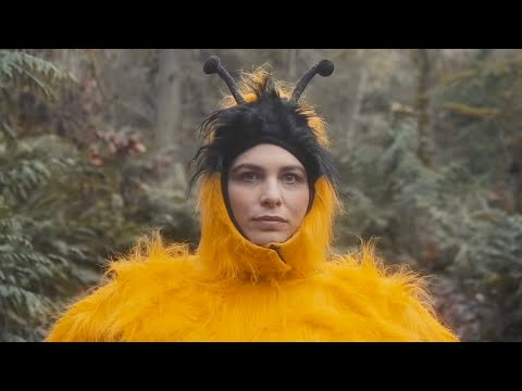 "The Head and the Heart - ""Honeybee"" Official Music Video"