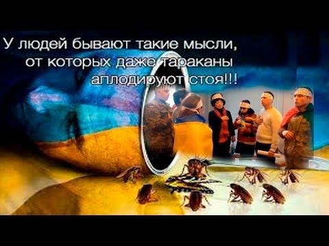 Маразм крепчает.  Новый бред Украинских СМИ