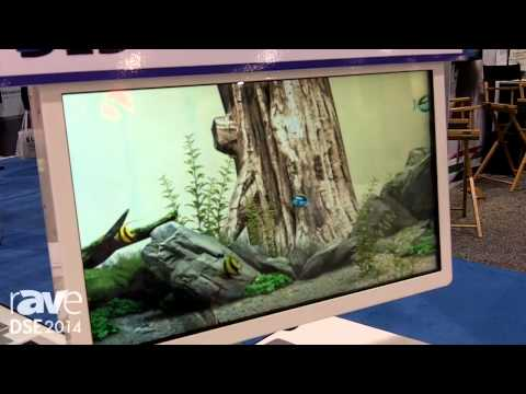 DSE 2014: Prime Resource's DLD Dual Layer Display Offers Transparency, Interactivity, 3D-ish Content