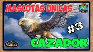 Mascotas UNICAS Cazador #3 | World of Warcraft