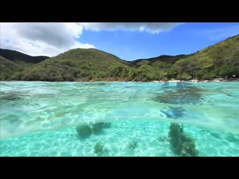 Gallows Point Resort St. John Snorkeling-HD.m4v