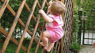 تسلق أطفال مثل سبايدرمان -  حاول ألا تضحك 😂🤣👏