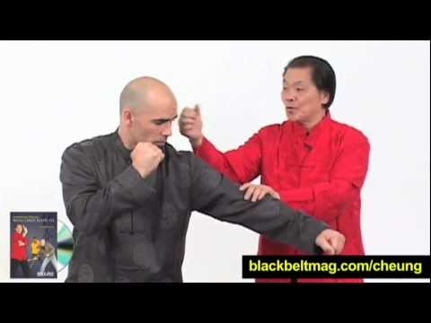 William Cheung + Eric Oram Wing Chun Techniques: Is Wing Chun Effective for Modern Self-Defense? Image 1