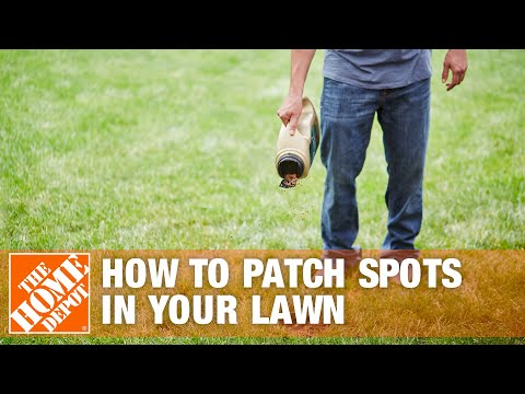 how to fix brown spots in lawn