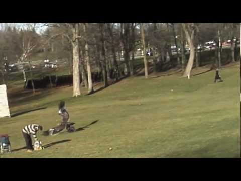 Adler greift Kind im Park an !!! Golden Eagle snatches Kid !!! Slowmotion added