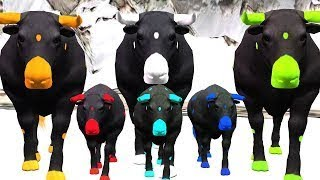 Learn Colours With Bull    3D Animated Cartoon Nursery Rhymes    Kids 3D Animation Song