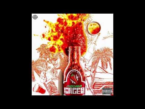 Aidonia - Peppa Sauce (Official Audio)