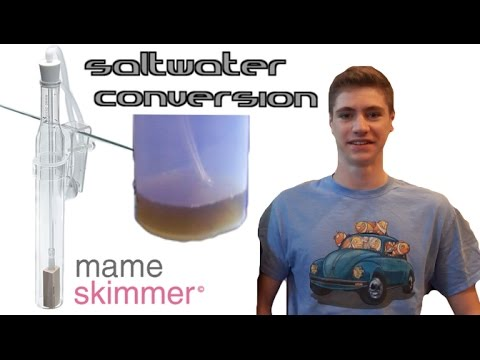 Mame Nano Protein Skimmer III Review - Saltwater Conversion