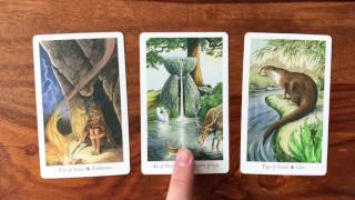 Daily Tarot Reading for 14 April 2017 | Gregory Scott Tarot