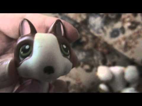 Littlest Pet Shop: Oregon Vlog #17