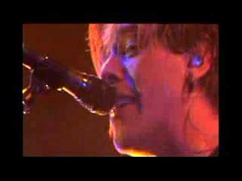 Pitiful (Live) - Sick Puppies