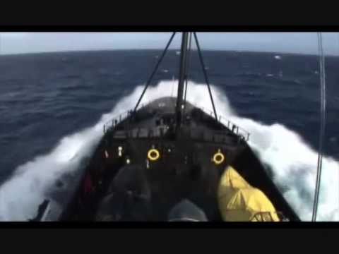 Operation Migaloo - 2007/08 - Sea Shepherd Whale Defense