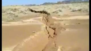 Massive Crack Opens Up In Arabian Desert, Other Areas Covered In Purple Flowers
