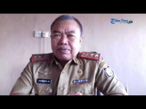 Ini Himbauan Kadis PK untuk Makassar tidak Rantasa