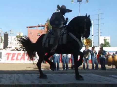 Campeonato Nacional de Caballos Bailadores Expo Ganadera Jalisco 2010
