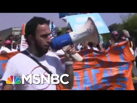 Protests Form In Defiance Of President Donald Trump's DACA Decision | MSNBC
